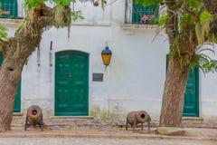 科洛尼亚德尔萨克拉门托,乌拉圭- 2016年5月04日:有绿色门和窗口的,两棵大树好的古老ehite房子 库存图片