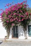 科洛尼亚德尔萨克拉门托, Uurguay,历史的街道,旅行的Sout 免版税库存照片