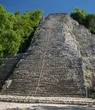 科巴玛雅金字塔 免版税库存图片