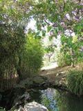 秘密池塘(帕路玛公园, Benalmadena,西班牙) 库存图片