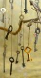 秘密钥匙 库存照片