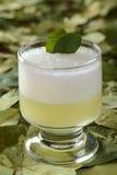 秘鲁叫的古柯的鸡尾酒变酸 库存照片