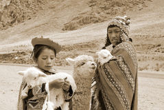 秘鲁孩子 库存图片
