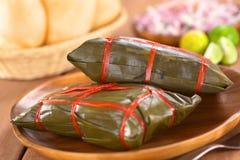秘鲁玉米粽子 库存图片
