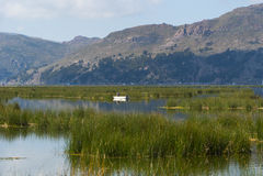 秘鲁的喀喀湖 免版税库存照片