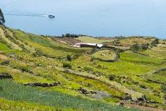 秘鲁的喀喀湖 库存照片