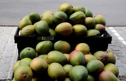 从秘鲁的芒果果子 免版税库存照片