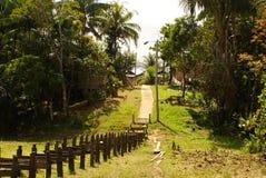 秘鲁,秘鲁Amazonas风景。照片礼物典型的印地安部落解决在亚马逊 免版税库存图片