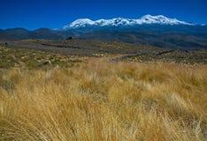 秘鲁- Coropuna山高地  库存照片