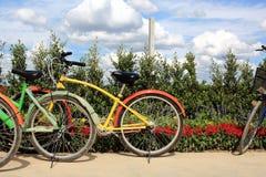租务骑自行车停放的附近的五颜六色的花床 免版税库存图片