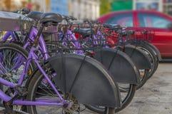 租的几辆自行车在城市 图库摄影
