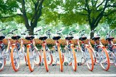 租的自行车在街道上 免版税库存图片