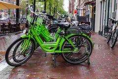 租的自行车在阿姆斯特丹 拍摄在一个雨天 免版税库存照片