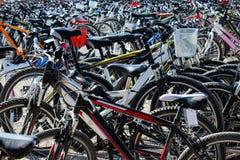 租的自行车 免版税图库摄影