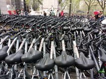 租的,中央公园, NYC, NY,美国自行车 免版税库存图片