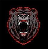 积极的北美灰熊头五颜六色的模板 皇族释放例证