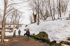 积雪与不生叶的树的地面和游人在冬天在Fukidashi区域在北海道,日本停放 库存照片