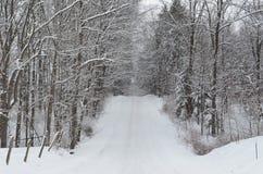 积雪的乡下公路在冬日 免版税库存照片