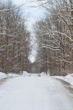 积雪的乡下公路在冬日 免版税库存图片