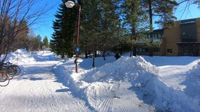 积雪的优美的风景室外早晨 股票视频