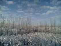 积雪的克什米尔 库存照片