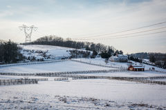 积雪的农场冬天视图在农村卡洛尔县, Maryla 免版税库存照片