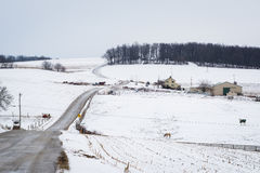 积雪的农场和绵延山路和看法,在杰夫附近 免版税图库摄影