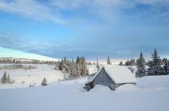 积雪的农村附属建筑 库存照片
