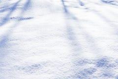 积雪的北极丛显露一个感觉上的方面 库存照片