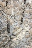 积雪的围场莫斯科 免版税库存图片