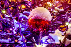积雪的圣诞树和红色球与一个杯子雪 库存图片