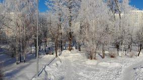 积雪的城市公园在冬天和莫斯科,俄罗斯 股票录像