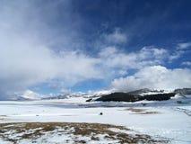 积雪的塞兰赛里木湖蓝天冬天 免版税图库摄影