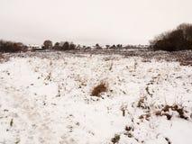 积雪的外部领域草甸冬天12月风景natu 库存照片