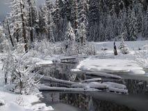 积雪的小河 库存图片