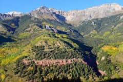 积雪的山和黄色白杨木 库存图片