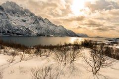 积雪的山在冬天 库存图片