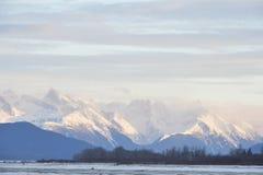 积雪的山在阿拉斯加 免版税库存照片