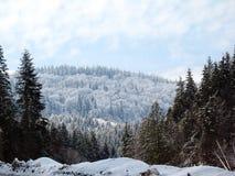 积雪的山小山 免版税图库摄影