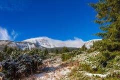 积雪的山景 免版税库存图片