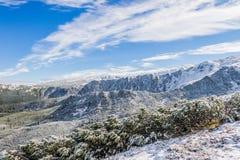 积雪的山景 库存图片