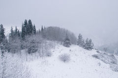 积雪的山Ile Alatau在多云天 免版税库存照片