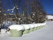积雪的干草捆绑, Goldegg,奥地利 免版税图库摄影