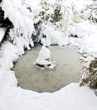 积雪的庭院池塘 库存图片