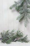 积雪的枝杈 库存图片