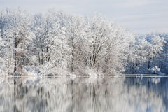 冬天, Jackson Hole湖 免版税图库摄影