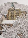 积雪的树和大厦 免版税库存图片