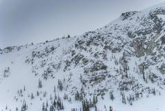 积雪的树和岩石面孔在山冠上 库存照片