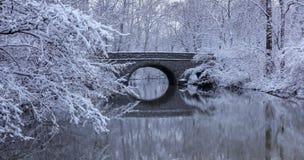 积雪的树和石桥梁 库存照片