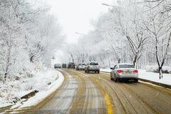 积雪的树和路在冬天 库存图片